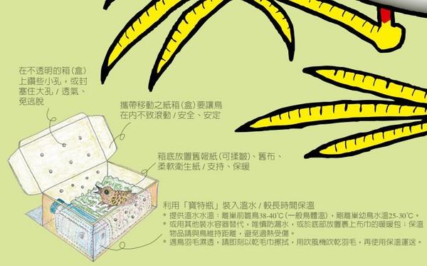 ▲▼ 台北市野鳥學會,台北鳥會,野鳥救援。(圖/社團法人台北市野鳥學會)