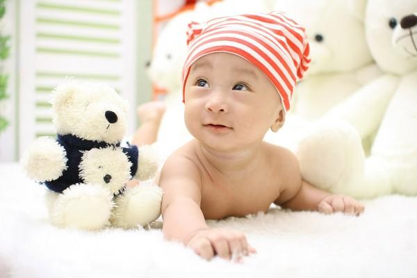 ▲絨毛玩具是腸病無溫床。(圖/取自pixabay)