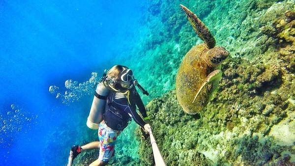 Kid這幾天剛好也在小琉球潛水。(圖/取自Kid粉絲團)
