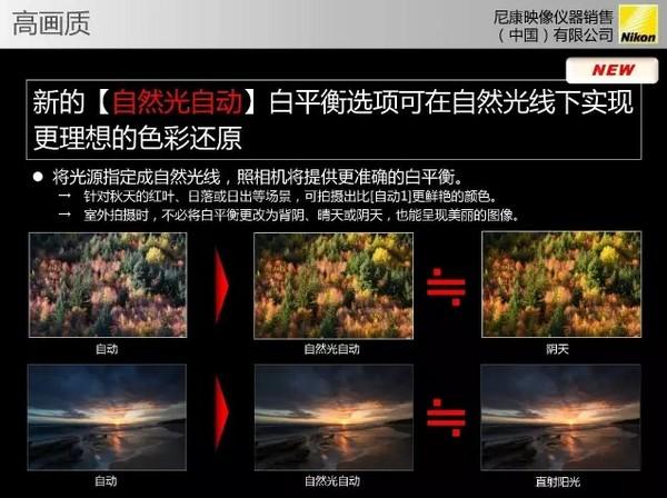 Nikon D850官方詳細規格流出。(圖/翻攝自 NikonRumors)