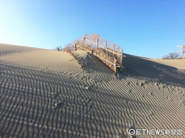 ▲草漯沙丘。(圖/實習記者張舒芸攝)
