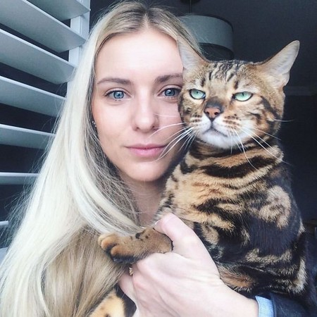 ▲▼一哭二鬧三咬人! 跟貓自拍會遇到的五種狀況。(圖/翻攝網站/boredpanda)