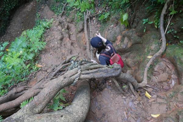 原始的攀爬路,是進入大天池前必經之路。
