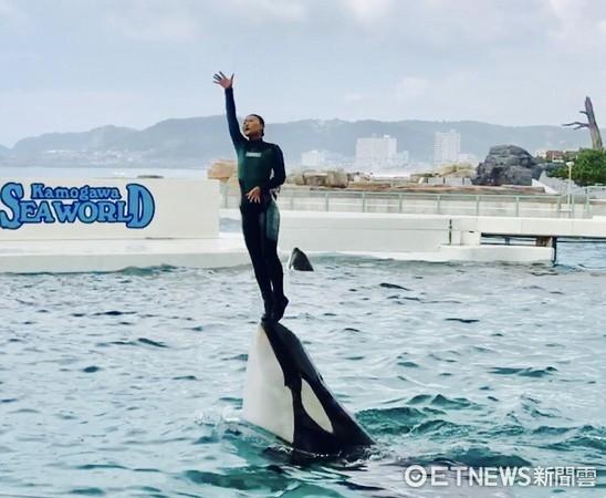 日本鴨川海洋公園享受被「殺人鯨」濕身快感。(圖/記者趙于婷攝)