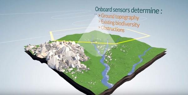 透過無人機種樹,一天最大值為10萬顆。(圖/取自YouTube/Info Biocarbon)