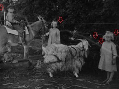 這張照片預言了3個孩子的死亡 肢解慘狀從畫面看出端倪