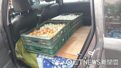 芬普尼雞蛋北部也有 北市個體戶進貨送永和賣...下架87台斤