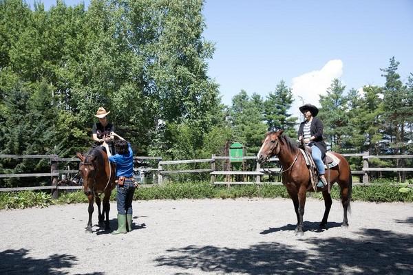 練習場中,得先練習如何控制馬匹。