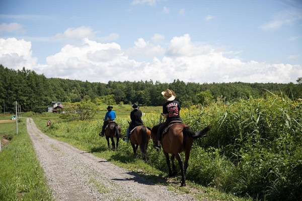 走在田地中,馬兒時不時停下吃草,其實有點難控制。