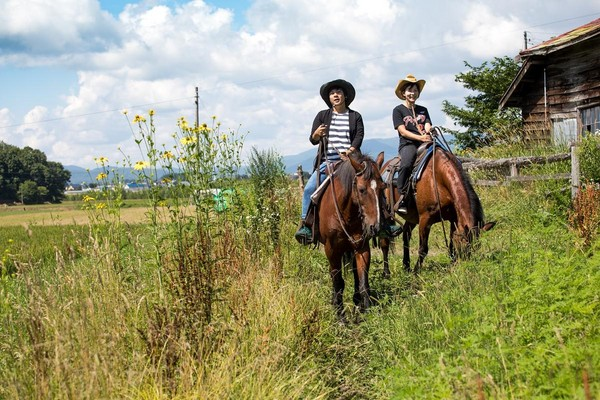 在馬背上風吹過田地,空氣很涼。
