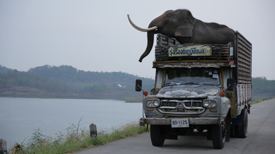得獎公布/《親愛的大笨象》陪你在泰國展開一趟幽默又溫暖的公路之旅!