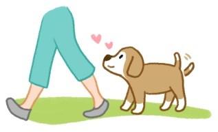 狗狗愛你的5種表現!快來看看狗狗多愛你!(圖/毛起來 MaoUp)