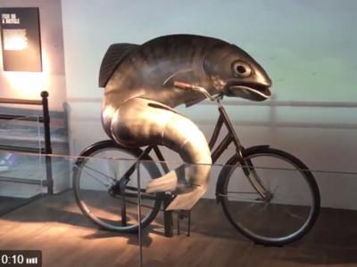 看一秒就會被吸入!詭異死魚騎腳踏車,擺動同時大眼盯著你