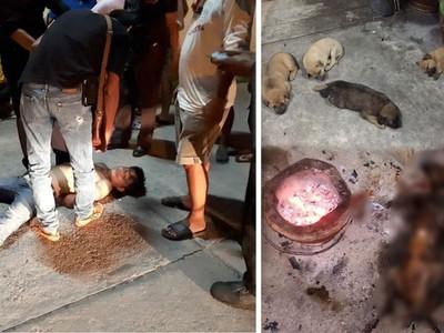剛生一窩小狗就被烤成「香肉」!泰男虐死母狗引民眾圍毆