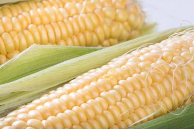 玉米是蔬菜or主食?專家答案嚇壞網友