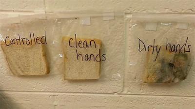 「三片吐司」說明洗手重要性,嚇到我不敢吃手手啦