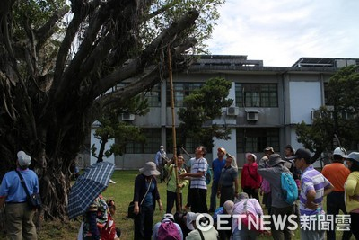 台東林管處護樹 開課程實務教學