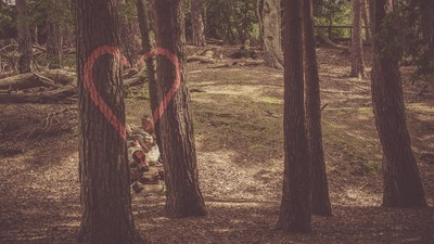 【奧斯塔羅】分開後一樣想念,分手的戀情有機會復合嗎?