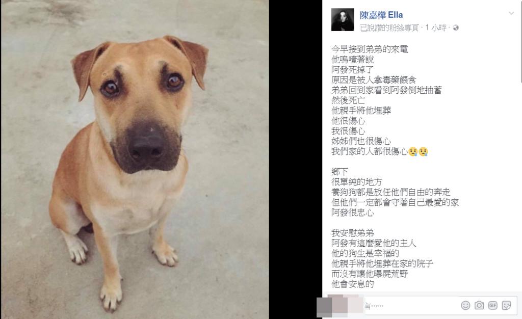 ▲ella愛犬被毒死。(圖/翻攝自ella臉書)