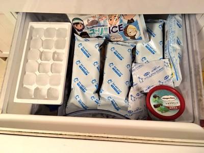 冰棒放冰箱被人偷吃?用「偽保冷劑」騙過貪吃鬼!