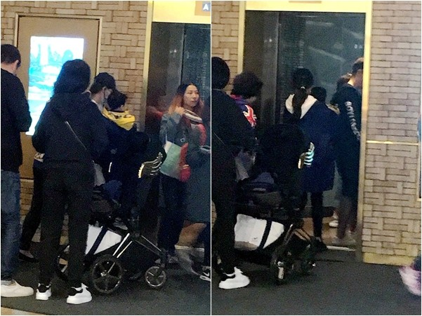 ▲▼網友捕獲野生Baby及兒子小海綿。(圖/翻攝自微博、秒拍)