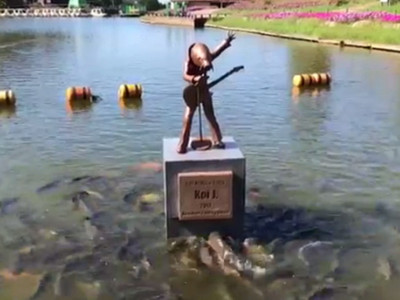 鯉魚巨星開唱!台下「瘋狂翻滾互壓」,原來粉絲都在搶飼料