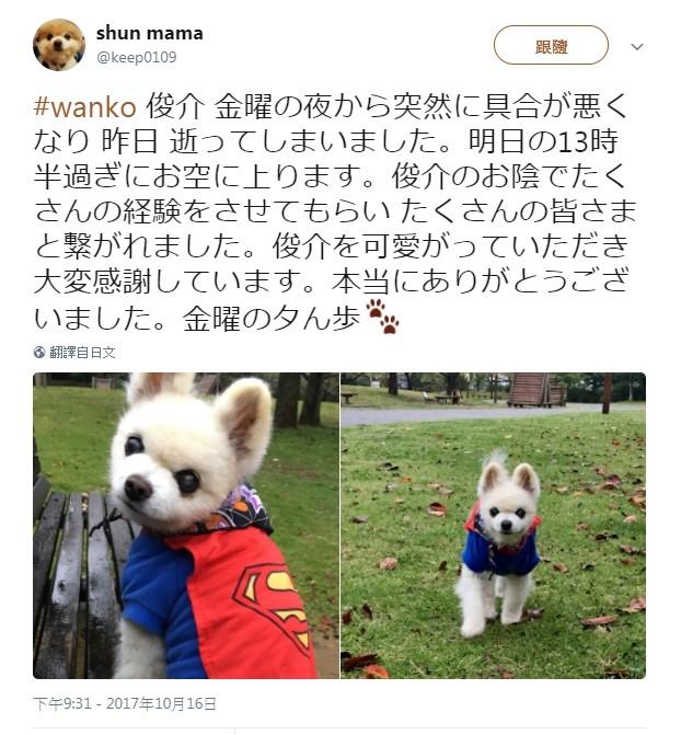 ▲「俊介君」的主人在推特發文透露死訊。(圖/翻攝自shun mama推特)