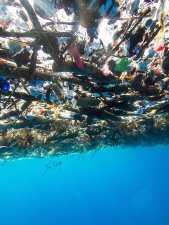 ▲ 從水面下拍攝的照片顯示,大量垃圾漂流阻擋光線照射進水中。(圖/翻攝自Caroline Power Photography粉絲專頁)