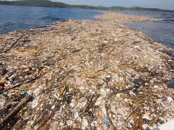▲ 大量塑膠垃圾漂在海面上 。(圖/翻攝自Caroline Power Photography粉絲專頁)