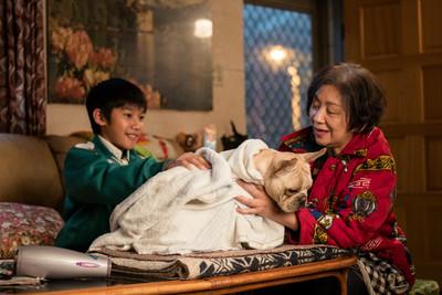 影評/五十年後 當鮑起靜走進台灣電影《生生》