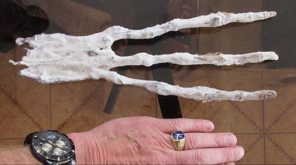 ▲▼祕魯出土千年乾屍,竟是「3指3趾」。(圖/翻攝自YouTube)