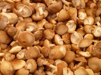 網傳「香菇柄、豆瓣醬」有毒不能吃! 食藥署急闢謠