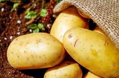 馬鈴薯可吃又能藥用!配生薑消炎 含高澱粉敷臉超細緻