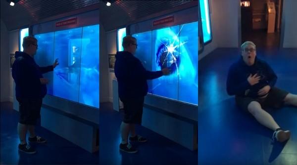 ▲▼ 美國男參觀博物館,手摸螢幕,卻被鯊魚嚇壞,當場慘叫、跌坐在地。(圖/翻攝自Youtube)