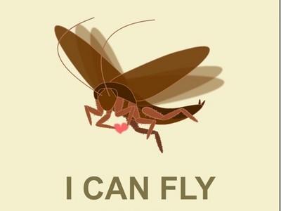 蟑螂明明沒有毒,為啥那麼恐怖?網友吵破嘴:反正就是超噁!