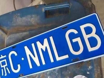大街上掛「X你媽」縮寫..最蠢假車牌秒被警察法辦
