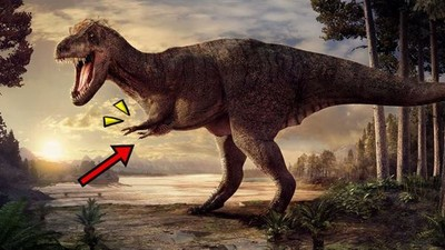 暴龍超短手是賣萌嗎?古生物學家:小雞腿是侏儸紀最強武器