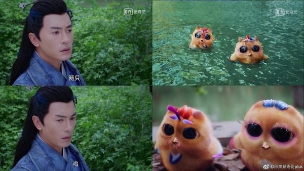 ▲小鳳凰毛茸茸飛來相認,鄭元暢卻把鳳凰看成「2隻雞」。(圖/翻攝自微博)