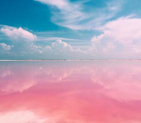 ▲墨西哥粉色夢幻鹽湖Las Coloradas(圖/翻攝自patylinage_ IG)