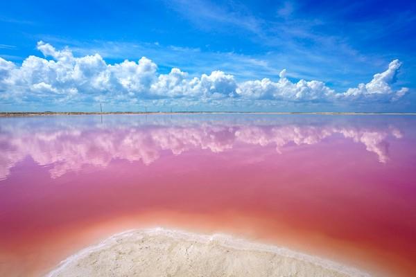 ▲墨西哥粉色夢幻鹽湖Las Coloradas(圖/翻攝自expertvagabond.com)