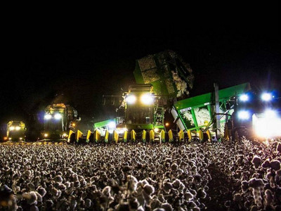 這張是「演唱會」的照片嗎?台下觀眾人不像人…卻連Google也被騙