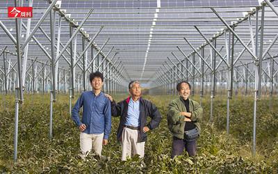 今周刊/從核災區變綠能大國! 看日本如何向天要電?