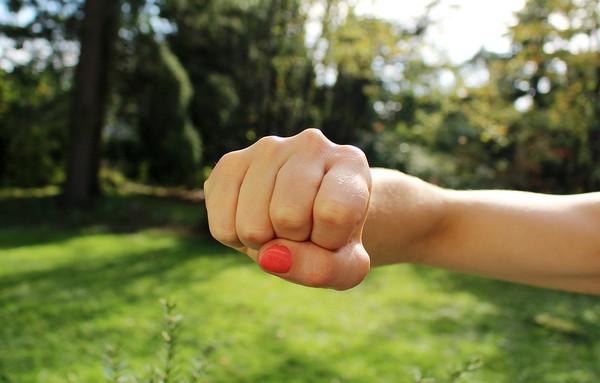 ▲握拳示意圖。(圖/翻攝Pixabay)