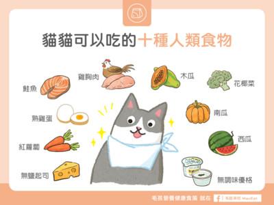 不只飼料、罐頭! 「10種人類食物」貓咪也能吃...放心吧