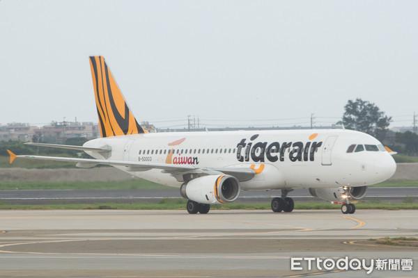 ▲台灣虎航,Tigerair Taiwan,IT,TTW,廉航,廉價航空。(圖/記者季相儒攝)