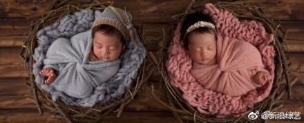 ▲▼張雨綺平安一雙兒女,安詳睡著的模樣超可愛。(圖/翻攝自《新浪娛樂》、《新浪綜藝》微博)