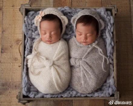 ▲▼「星女郎」張雨綺生下雙胞胎。(圖/翻攝自《新浪娛樂》、《新浪綜藝》微博)
