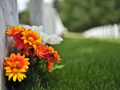 英國男孩墳墓前,神秘訪客70年持續送花!家人終於感動解惑..