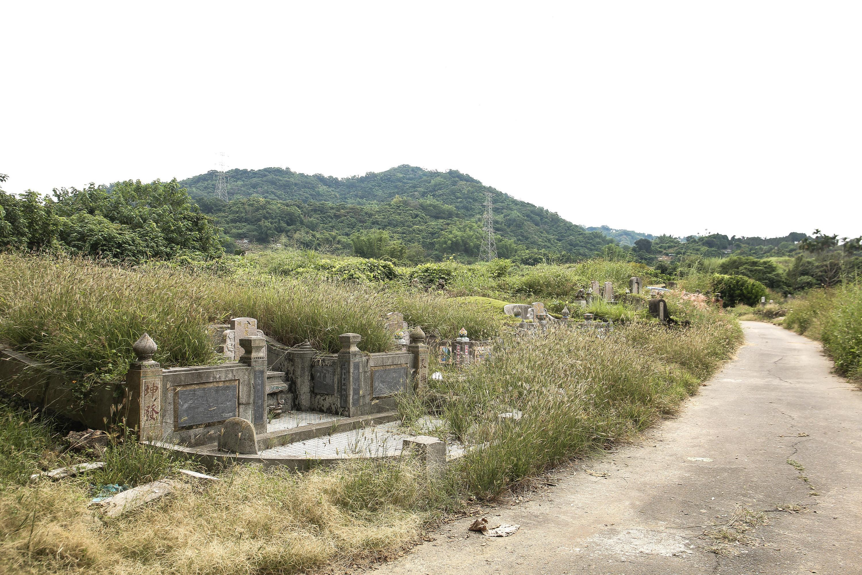 ▲▼土葬,墳墓,環保,掃墓,祭祖,祖先。(圖/記者周宸亘攝)