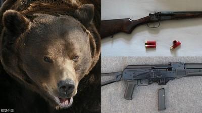 戰鬥熊族扛走「突擊步槍+散彈槍」 俄警方搜山要來個大火拼